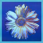 Daisy (Blue on Blue)